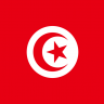 Can I work in Tunisia?